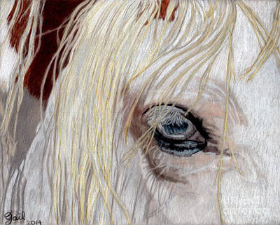 The Eye Has It Poster by Gail Seufferlein