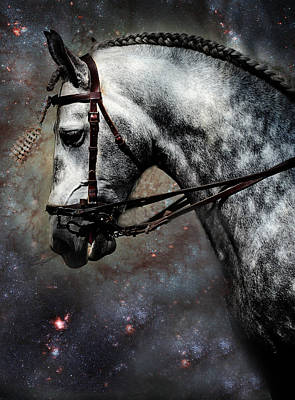 The Horse Among The Stars Poster by Jenny Rainbow