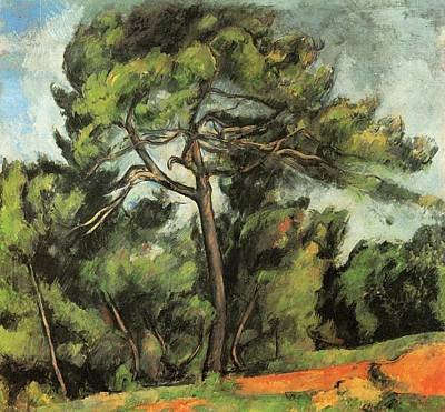 The Large Pine Poster by Paul Cezanne