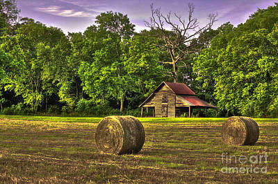 The Old Barn Round Bales Dead Oak Tree Poster by Reid Callaway