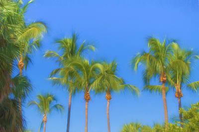 The Palms Poster by Kim Hojnacki