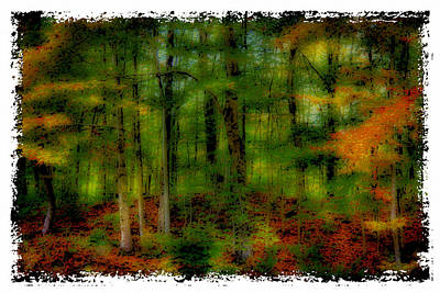 The Peak Color Of Autumn Poster by David Patterson