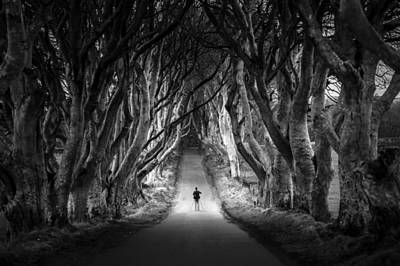 The Photographer At The Dark Hedges In Northern Ireland Poster by Giuseppe Milo