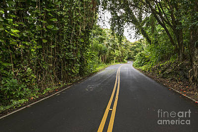 The Road To Hana Poster by Jamie Pham