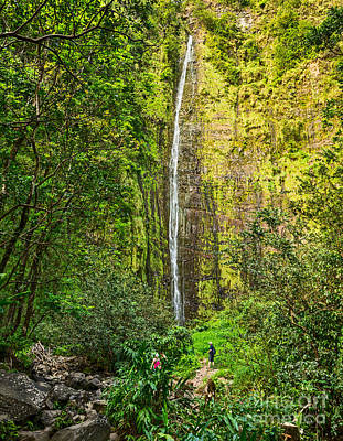 The Spectacular And Large Waimoku Falls In Maui. Poster by Jamie Pham