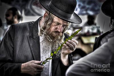 the Sukkoth 4 species market Poster by Dan Yeger