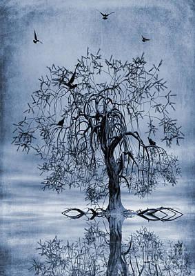 The Wishing Tree Cyanotype Poster by John Edwards