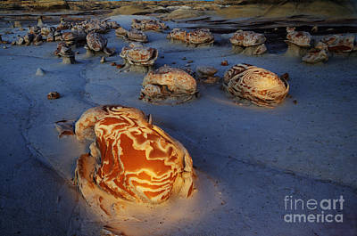 The Egg Factory  Bisti/de-na-zin Wilderness At Night Poster by Bob Christopher