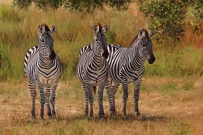 Three Amigos Poster by David Stribbling