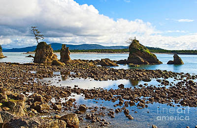 Three Graces Rock Formation In Oregon Poster by Jamie Pham