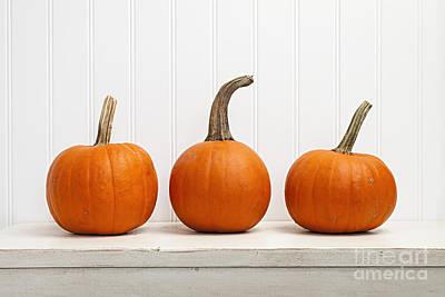 Three Pumpkins Poster by Elena Elisseeva