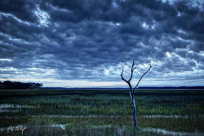 Tidal Marsh View Poster by Phill Doherty