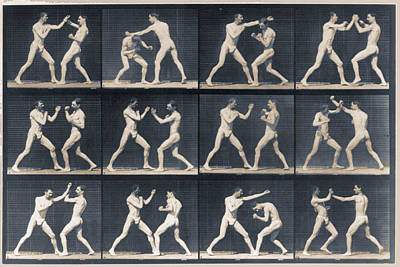 Time Lapse Motion Study Men Boxing Poster by Tony Rubino