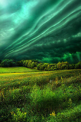 Take My Hand Poster by Phil Koch