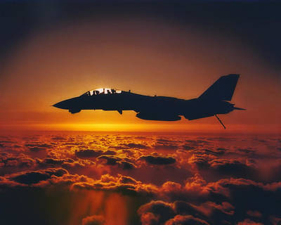 Tomcat Sunrise Poster by Peter Chilelli