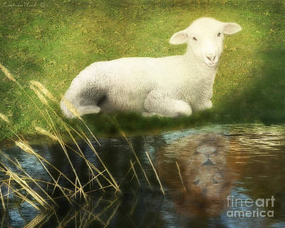 Transformation Lamb Or Lion Poster by Constance Woods