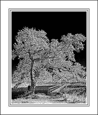 Tree And Pier Poster by Barry Monaco