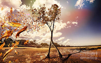 Tree Leaves On A Sea Change Poster by Jorgo Photography - Wall Art Gallery