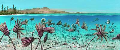 Triassic Land And Marine Life Poster by Richard Bizley