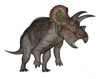 Triceratops Dinosaur Standing Up Poster by Elena Duvernay