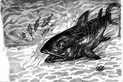 Tuna Poster by Robert Tiritilli