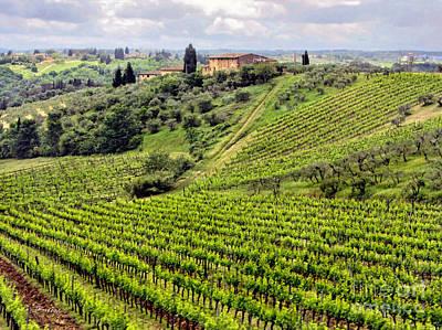 Tuscany-italy Poster by Jennie Breeze