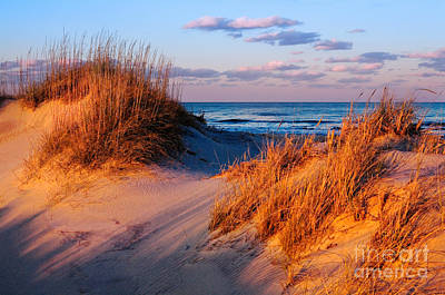 Two Dunes At Sunset - Outer Banks Poster by Dan Carmichael