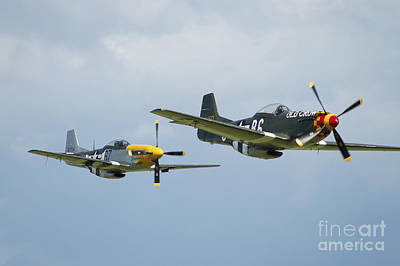 Two P-51d Mustangs In United States Poster by Riccardo Niccoli
