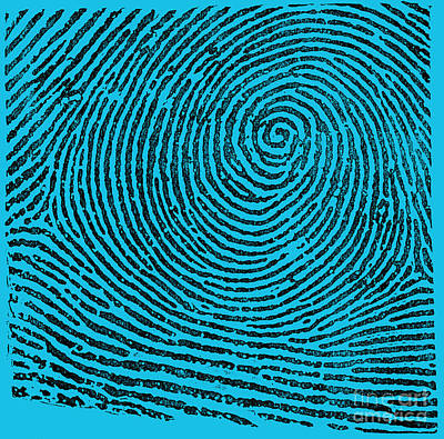Typical Whorl Pattern, 1900 Poster by Science Source