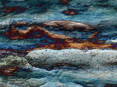 Untamed Sea 2 Poster by Carol Cavalaris