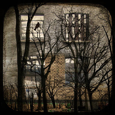 Urban Window  Poster by Gothicolors Donna Snyder