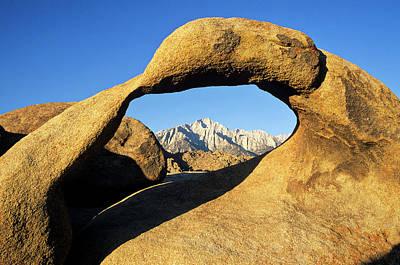 Usa, California, Eastern Sierra, Lone Poster by Ann Collins