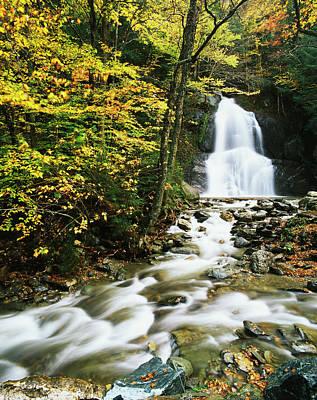 Usa, Vermont, Granville, View Of Moss Poster by Adam Jones