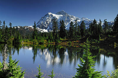Usa, Washington, Mount Shuksan, Mount Poster by Gerry Reynolds
