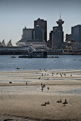 Vancouver Harbor By Stanley Park At Low Tide Poster by Randall Nyhof