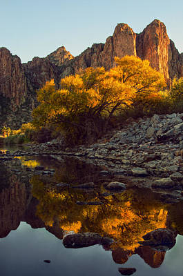 Vertical Fall Color Reflections Poster by Dave Dilli