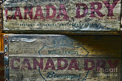 Vintage Canada Dry Poster by Paul Ward