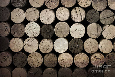 Vintage Corks Poster by Jane Rix