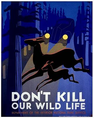 Vintage Poster - Don't Kill Our Wild Life Poster by Benjamin Yeager