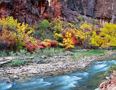 Virgin River And Rock Face At Big Bend Poster by Panoramic Images