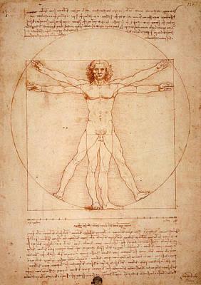 Vitruvian Man Poster by Bill Cannon