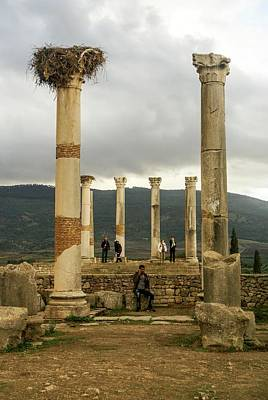 Volubilis Archeological Site Poster by Photostock-israel