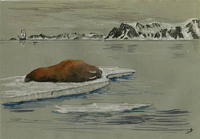 Walrus On The Iceberg Poster by Juan  Bosco