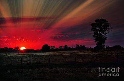 Warmth Of A Country Sunset Poster by Kaye Menner