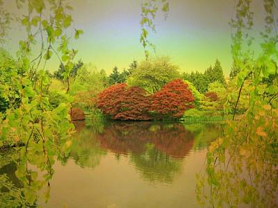 Reflection Poster featuring the photograph Warmth Of Spring by Shirley Sirois