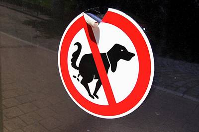 Warning To Dog Owners Poster by Mark Williamson