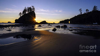 Washington Coast Evening Sunstar Tide Poster by Mike Reid