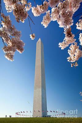 Washington Monument Poster by Inge Johnsson