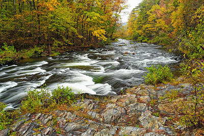 Watching It All Go By  At Beaver's Bend Broken Bow Fall  Foliage Oklahoma Poster by Silvio Ligutti