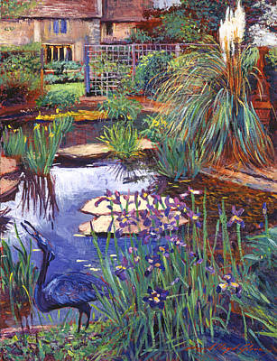 Water Garden Poster by David Lloyd Glover